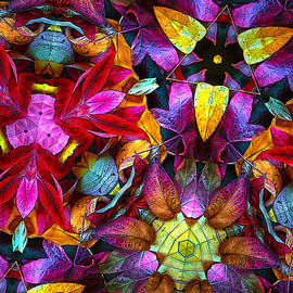 Floyd Hopper - Autumn Leaves Abstract