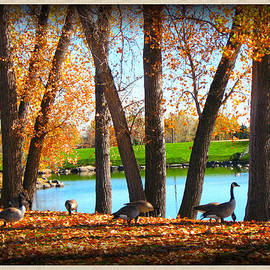 Gretchen Wrede - Autumn Leaves and Geese