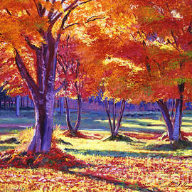 David Lloyd Glover - Autumn Leaves