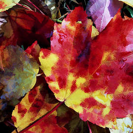 Allen Beatty - Autumn Leaves of Red and Gold