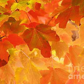 Regina Geoghan - Impressionistic Autumn Leaves