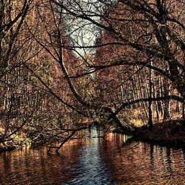 Leif Sohlman - Autumn light by Leif Sohlman