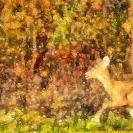 Dan Sproul - Autumn Light Deer In Forest
