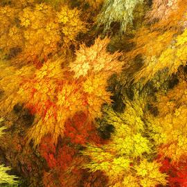 Martin Capek - Autumn