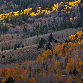 Southwindow Eugenia Rey-Guerra  - Autumn Mountain