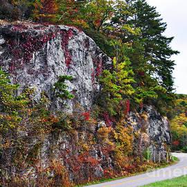 Lydia Holly - Autumn on The Blue Ridge Parkway