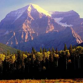 Karen Wiles - Autumn on the Mount