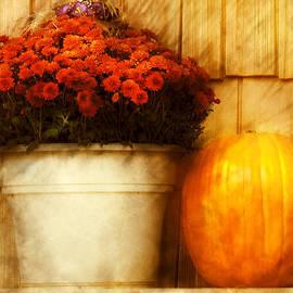 Mike Savad - Autumn - Pumpkin - Autumn still life III