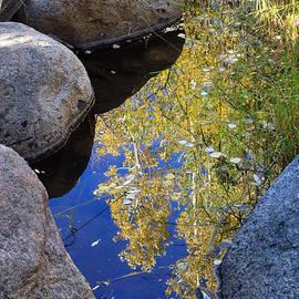 Karen Lee Ensley - Autumn Reflection