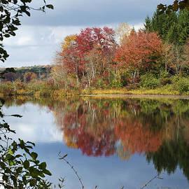 Christina Rollo - Autumn Reflection Through The Trees