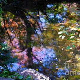 Nancy Mueller - Autumn Botanic Garden Reflections