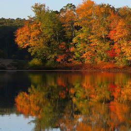 Dianne Cowen - Autumn Reflections