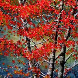 Janine Riley - Autumn Reflections