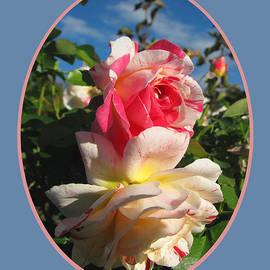 Brooks Garten Hauschild - Roses in Autumn