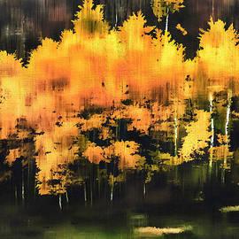 Barbara D Richards - Autumn Splendor