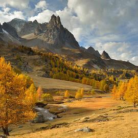 Matthieu Parmentier - Autumn splendor