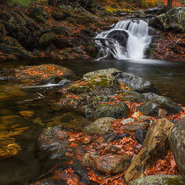 Christopher Whiton - Autumn Streams in Tamworth