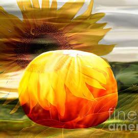 Annie Zeno - Autumn Sunflower And Pumpkin