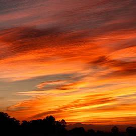 Troy Montemayor - Autumn Sunset San Joaquin County CA