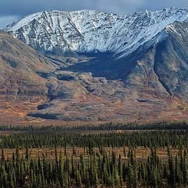 David Broome - Autumn Taiga Rock Glacier
