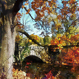 Susan Savad - Autumn Tree by Small Stone Bridge