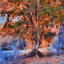 Stefania Vignotto - Autumn tree