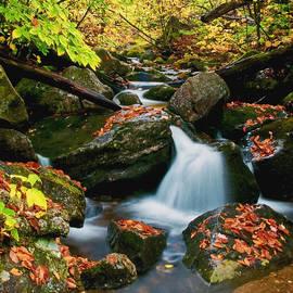 Aron Kearney Fine Art Photography - Autumn View