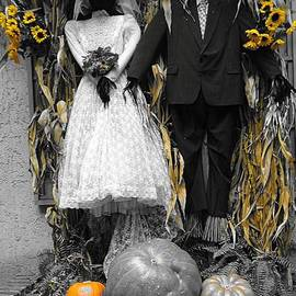 Dan Sproul - Autumn Wedding