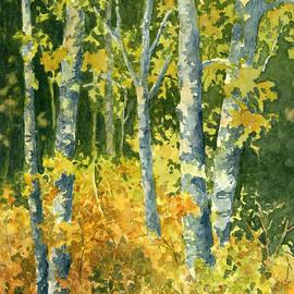 Lynne Wright - Autumn Woods