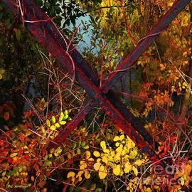 RC DeWinter - Autumn