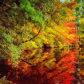 Tricia Marchlik - Autumn