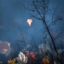 Scott Thorp - Autumns End