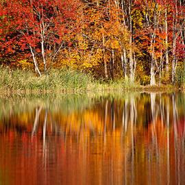 Karol  Livote - Autumns True Colors