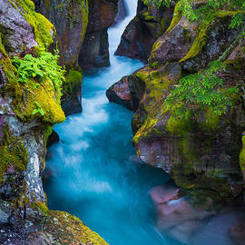 Inge Johnsson - Avalanche Creek