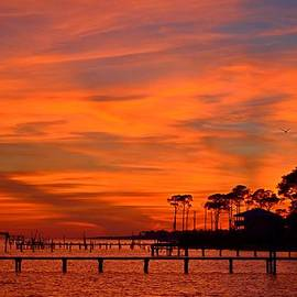Jeff at JSJ Photography - Awesome Fiery Sunset on Sound with Cirrus Clouds and Pines