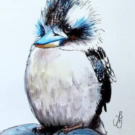 Anne Gardner - Baby Kookaburra
