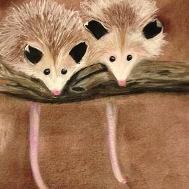 Renee Michelle Wenker - Baby Possums