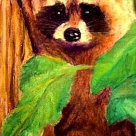 Jay Johnston - Baby Raccoon in Tree