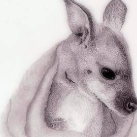 Wendy Brunell - Baby Roo