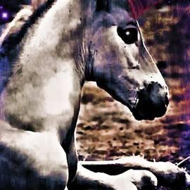 Tisha McGee - Baby Unicorn
