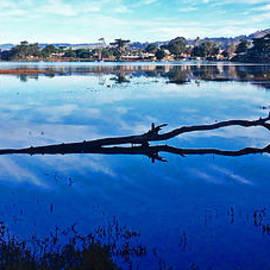 Kris Hiemstra - Back Bay Morning