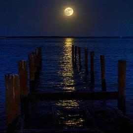 Steven Richman - Bahamas Nocturne