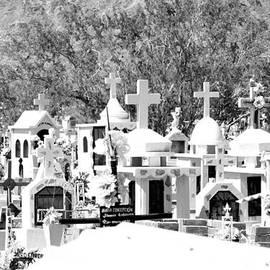 Dick Botkin - Baja Cemetery