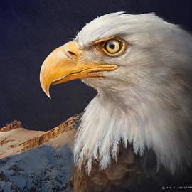 R christopher Vest - Bald Eagle Portrait With Mountain
