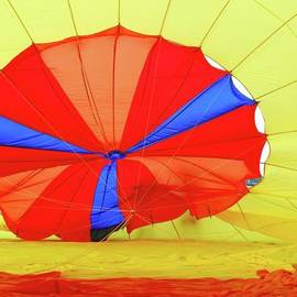 Allen Beatty - Balloon Fantasy   1