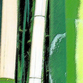 Ben and Raisa Gertsberg - Bamboo Abstraction