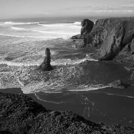 Michele  Avanti - Bandon Beach Incoming Tide