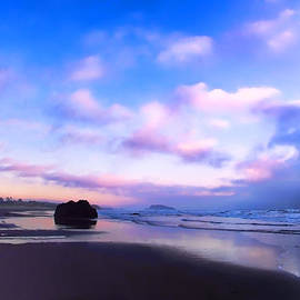 Athena Mckinzie - Bandon Beach Painted Sunset