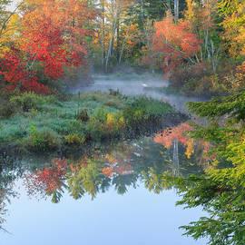 Bill  Wakeley - Bantam River Autumn Square