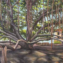 Darice Machel McGuire - Banyan Tree Lahaina Maui